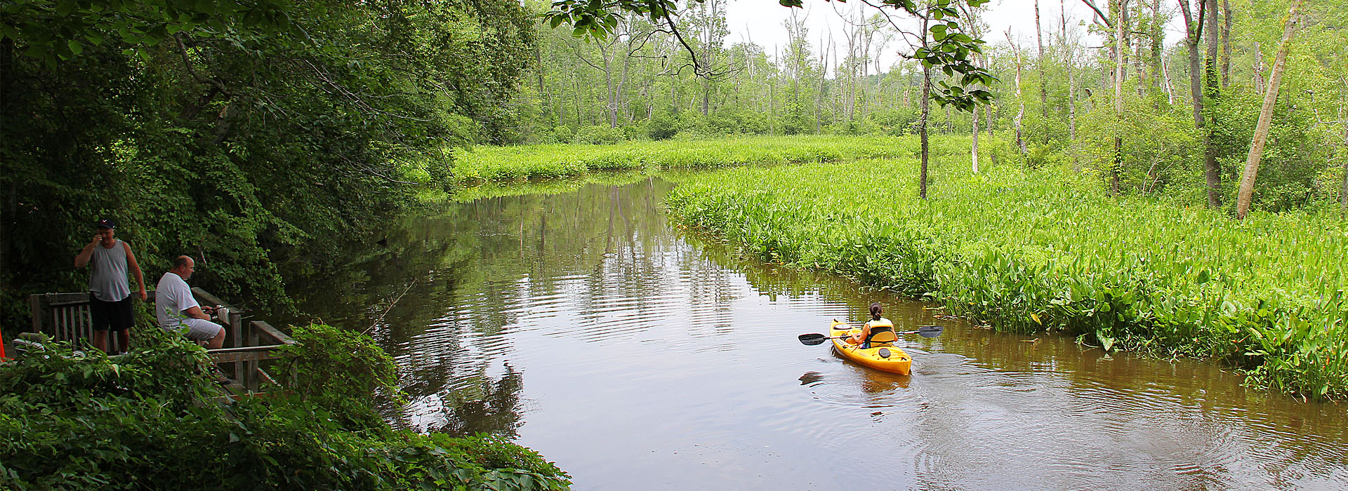 Fish the creek or explore in a kayak.